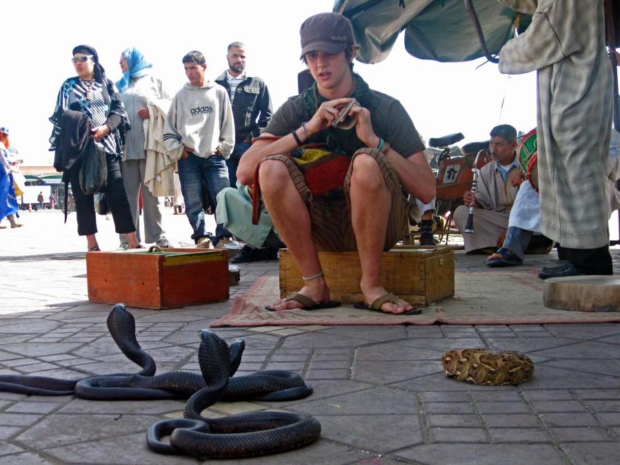 Alex loves snakes