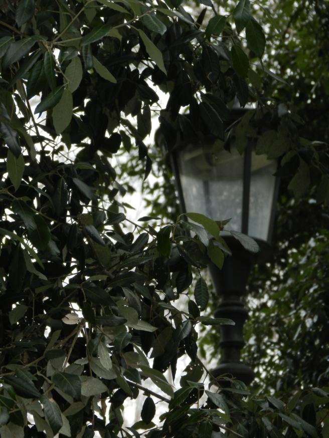 Lamp in Villa Borghese