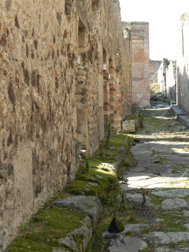 Back Alley in the Red Light District of Pompeii