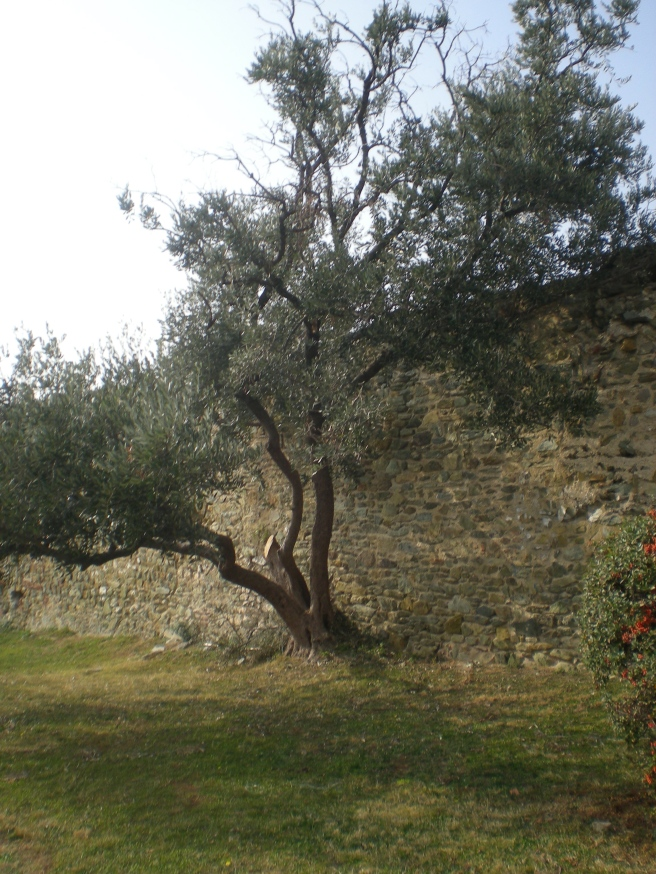The Byzantine Walls up on the Hill