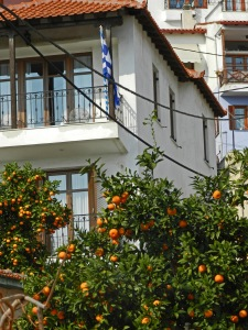 Intro to Thessaloniki White Washed Houses and Oranges