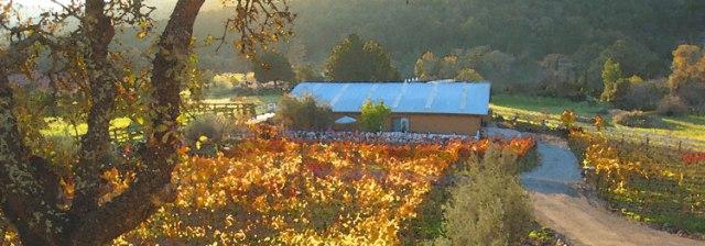 Rock Creek Vineyards, definitely a great stop on Sunday Wine Tasting