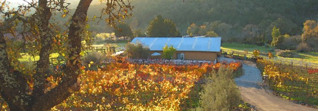 Rock Creek Vineyards, definitely a great stop on Sunday Wine Tasting