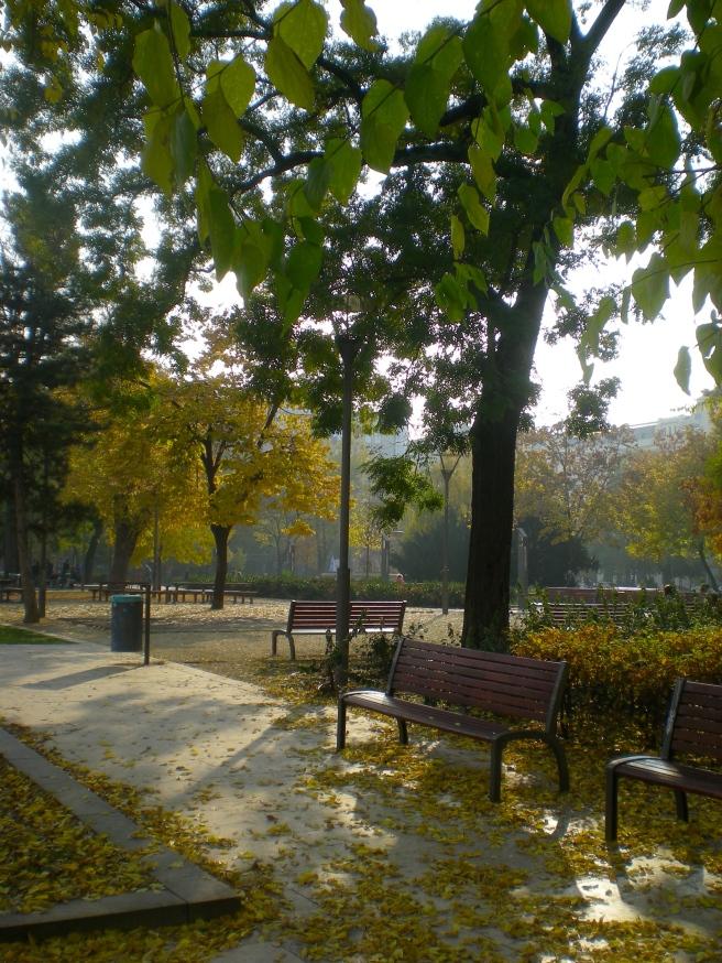 November in Budapest
