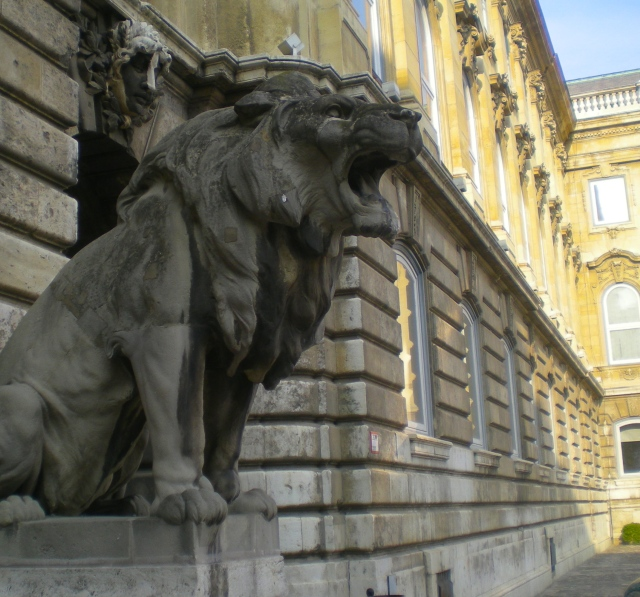 The lion guarding Buda Castle