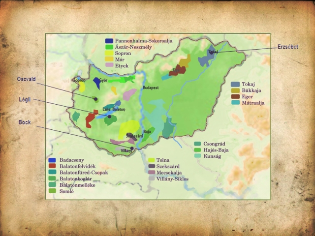 Wine Map of Hungary, photo courtesy of Carpathian Wines