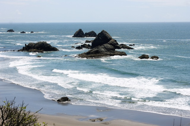 The Sun was shinning in Oregon the next day however.  And after a pitcher of IPA we had to go to the beach and goof off.