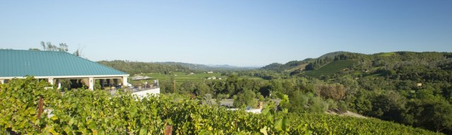 The view of Dry Creek Valley from Sbragia