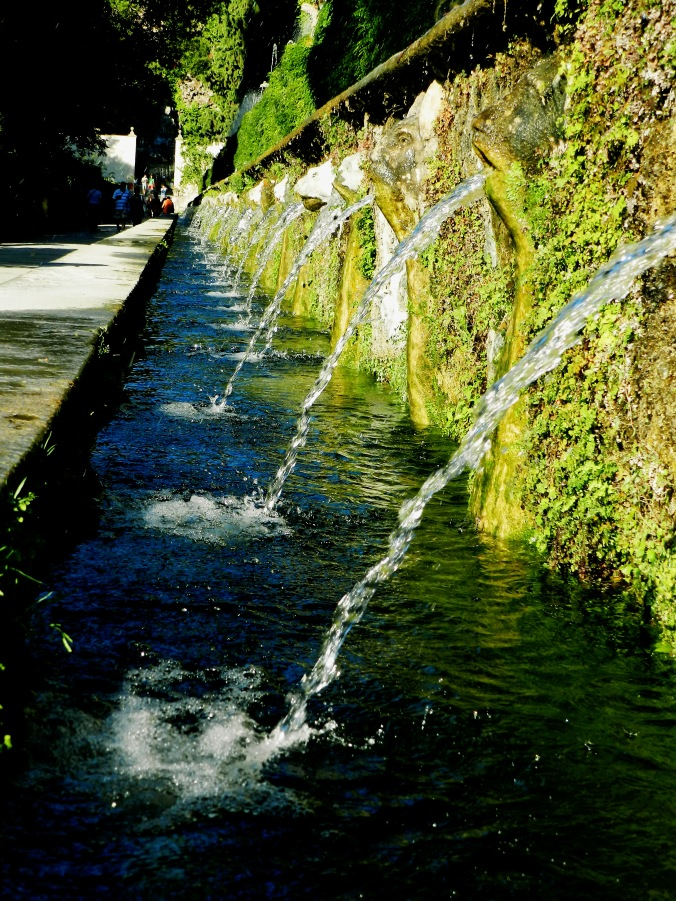 Row of 100 Fountains