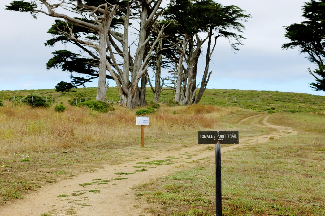 The beginning of the hike.  As soon as you reach the ocean there is a little turn off where there is a farmhouse.  This is where the hike begins
