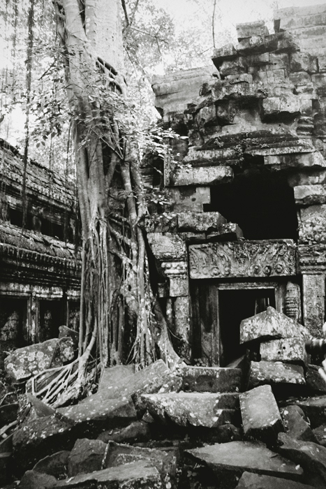 Crumbling Ruins of Ta Prohm